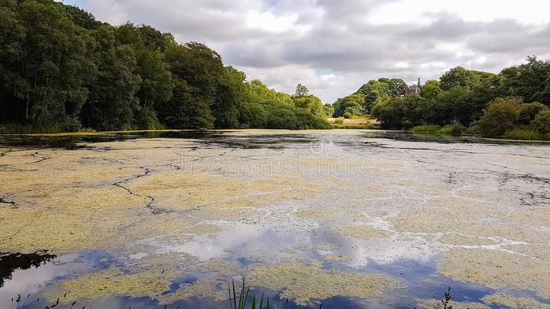 Pond near the Admissions Hut into Lyme Park, Disley in Chesire,. United Kingdom- low angle view royalty free stock images