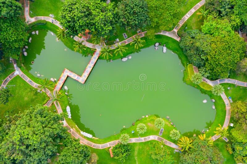 Pond in a Park stock photos