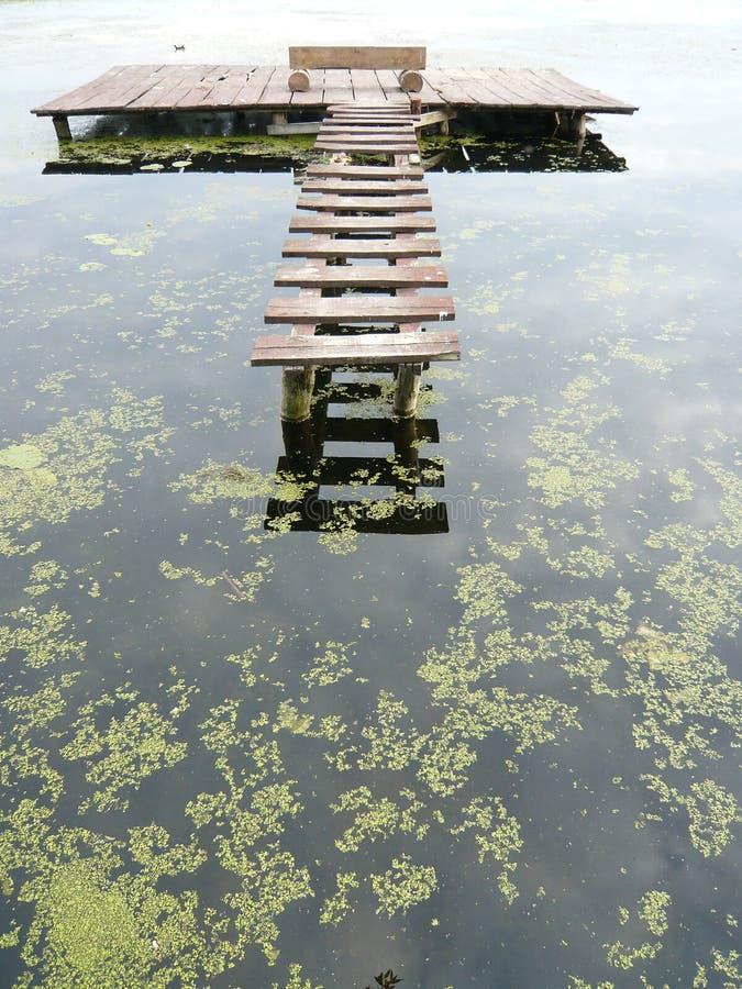 Pond pier royalty free stock photos