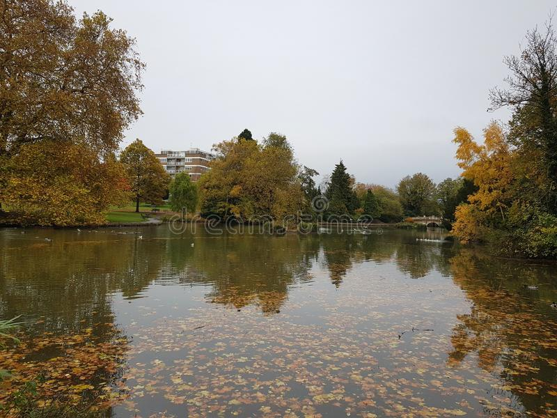 Pond in Pittville Park in Cheltenham, United Kingdom. River, travel, , water, , , , nature, , , , , autumn, season stock photo