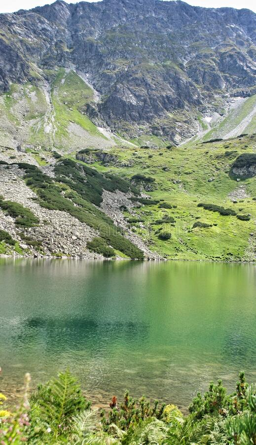 Pond in the Polish mountains with light reflecting from the water surface. In the background the Tatra mountain range with green g. Rass on the rocks in the stock photos