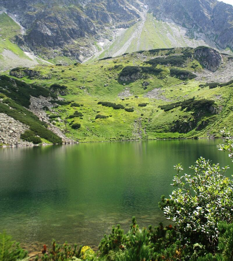 Pond in the Polish mountains with light reflecting from the water surface. In the background the Tatra mountain range with green g. Rass on the rocks in the royalty free stock photos
