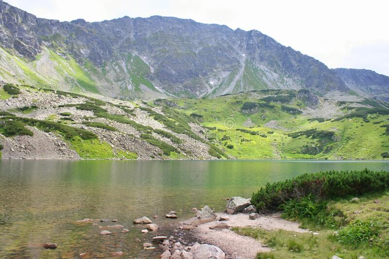 Pond in the Polish mountains with light reflecting from the water surface. In the background the Tatra mountain range with green g. Rass on the rocks in the royalty free stock photo