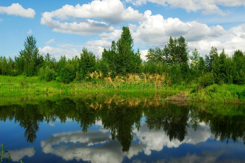 Pond reflection royalty free stock images