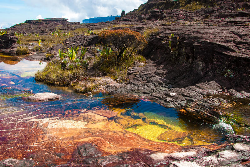 Pond on Roraima Tepui Summit, Gran Sabana, Venezuela. Pond in limestones on the summit of Roraima Table Mountain, Great Savanna, Canaima National Park, Venezuela royalty free stock images