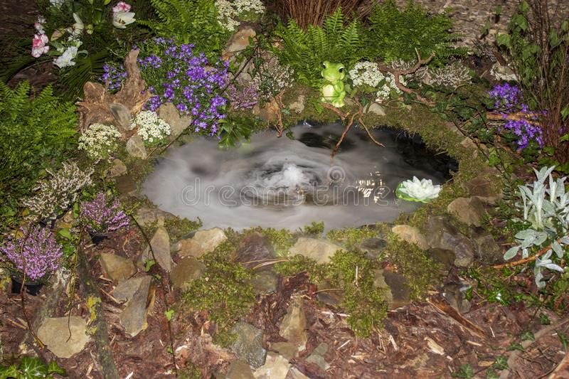 Pond with smoky water with flower frog stones stock photo