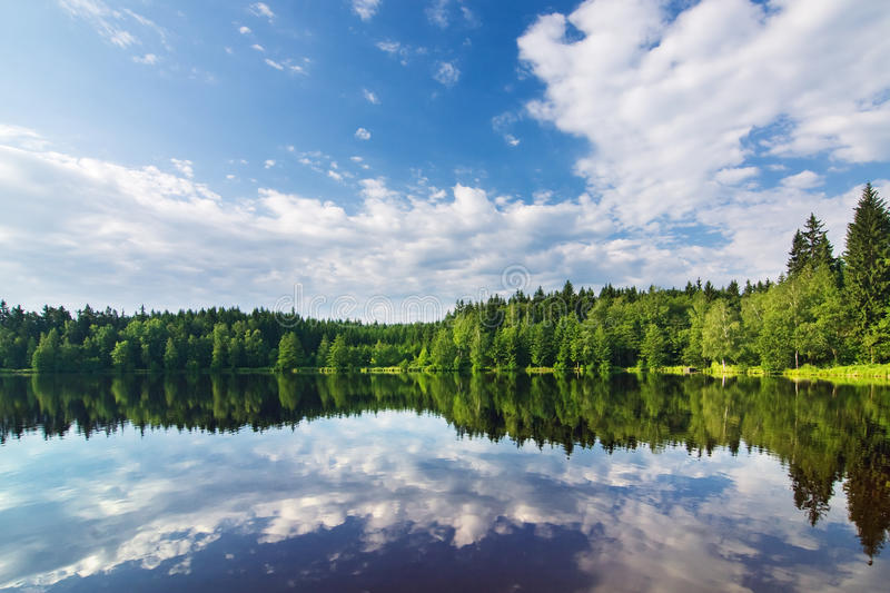 Pond In The Summer Countryside Stock Photography