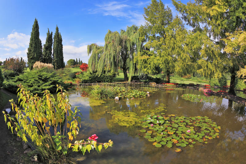 Download The Pond Surrounded By A Colored Shrubs Stock Image - Image of outdoors, flower: 25304599