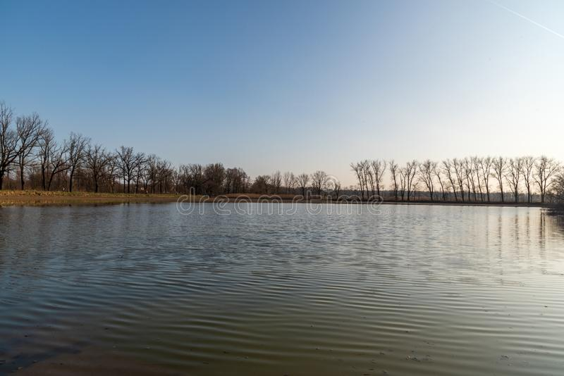 Pond with trees around and clear sky during early springtime evening stock photos