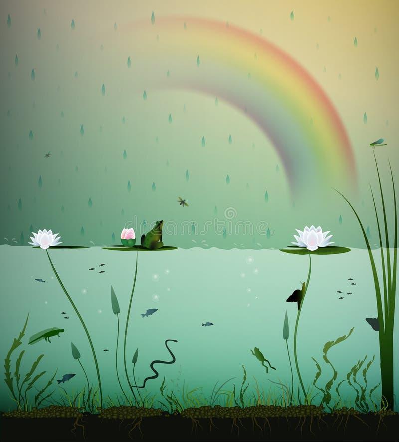 Pond a vida, sob a água, chuva do verão com o arco-íris vida na lagoa, lagoa dentro ilustração royalty free