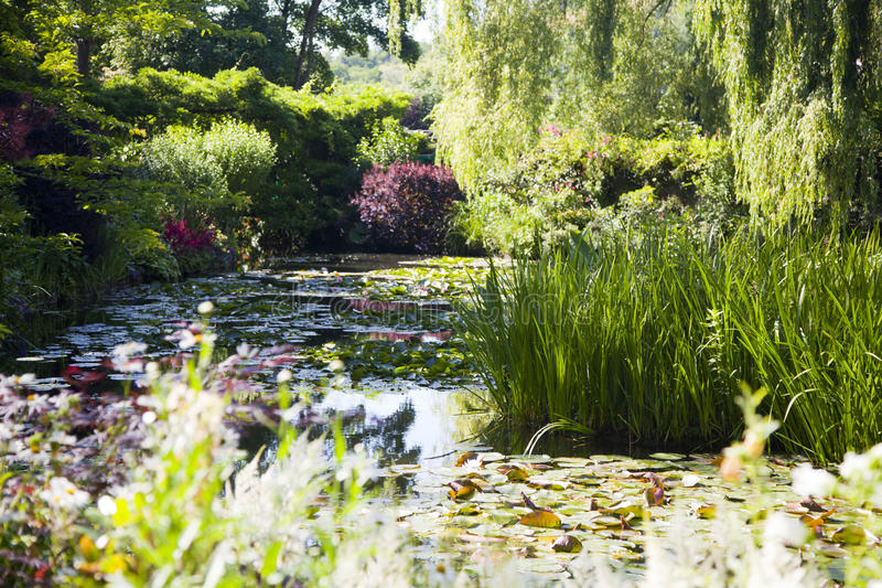 Pond with water lilies in the park. Trees and bushes with flowers around the lake with water lilies on a sunny day background image.Garden of Claude Monet in royalty free stock images