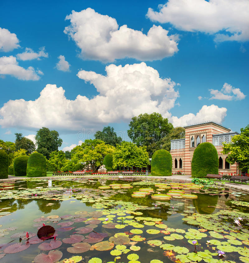 Pond with waterlilies in public park stock image