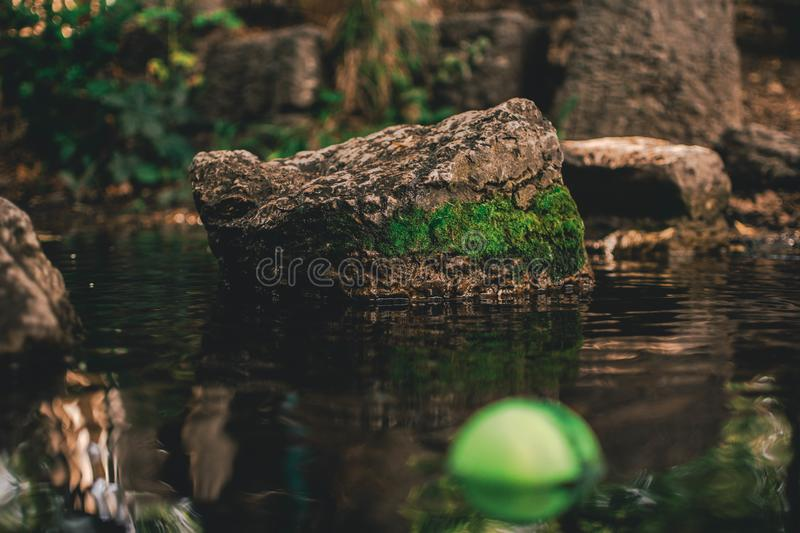 A Pond in Wimbledon Park. The photo was taken in a local park and the main focus of the image is a component of the stepping stones, an attraction for young stock photography