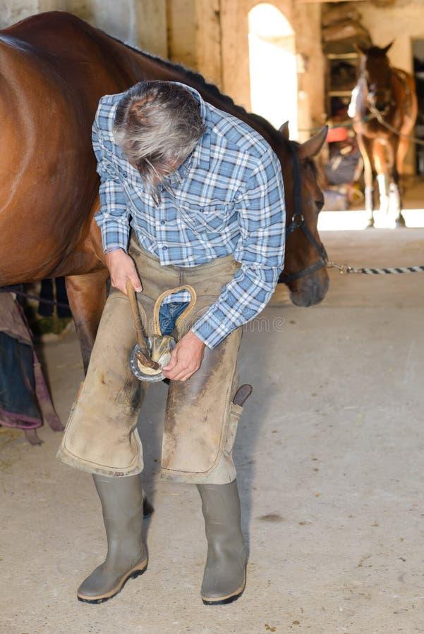 Pondo o casco sobre o cavalo fotos de stock royalty free