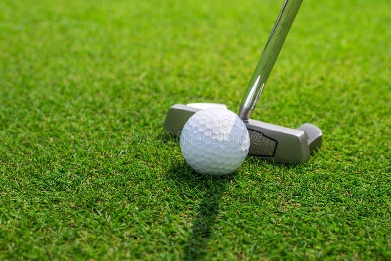 Pondo uma bola de golfe sobre o verde foto de stock royalty free