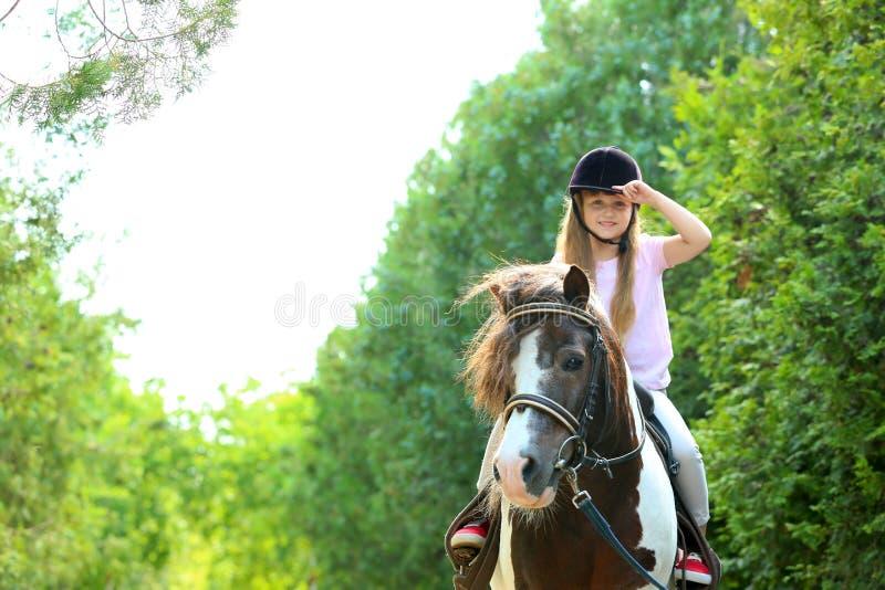 Poney mignon d'équitation de petite fille en parc photos libres de droits