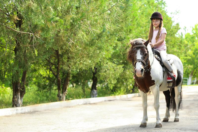 Poney mignon d'équitation de petite fille en parc images stock