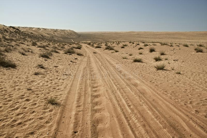 Ponga un neumático/las pistas del neumático a través de las dunas de arena del desierto fotos de archivo