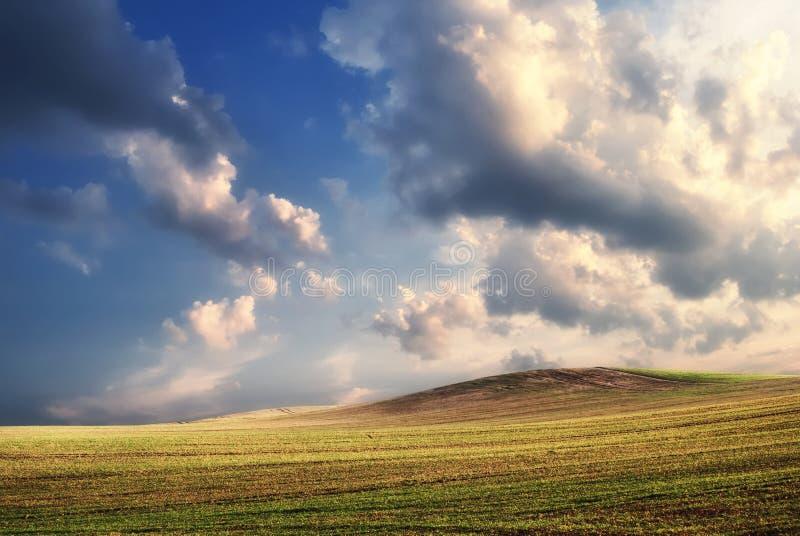 Ponga verde el campo cultivado con las nubes antes de la puesta del sol, Hungría imagen de archivo libre de regalías