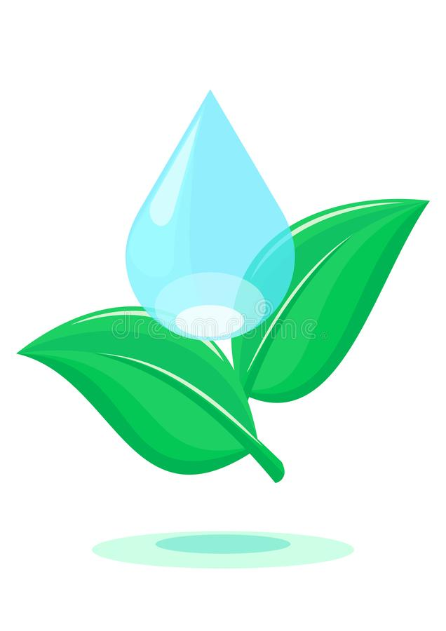 Ponga verde las hojas y la gota del agua stock de ilustración