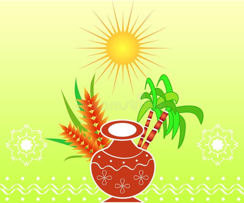 pongal festivalindier royaltyfri foto