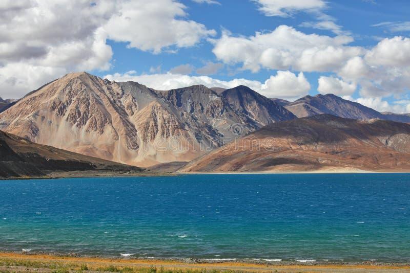 Pongong Tso湖、Ladakh、查谟&克什米尔,印度 免版税库存照片
