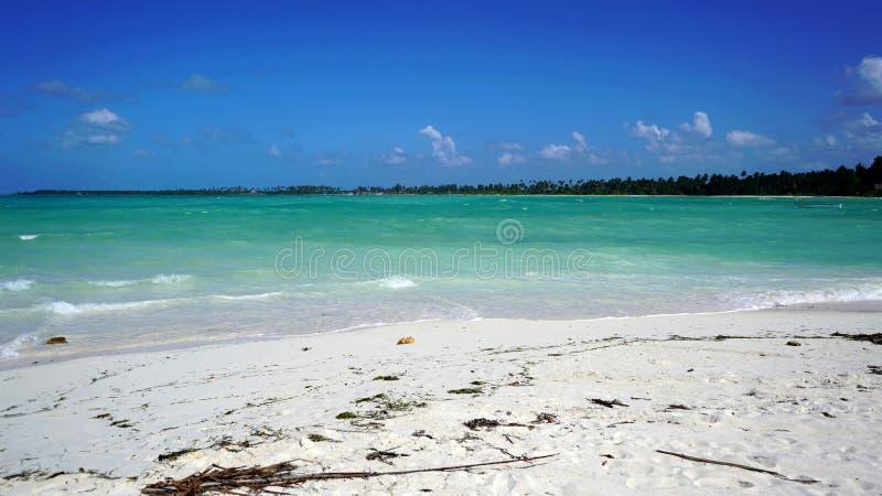 Pongwe海滩,桑给巴尔 免版税库存照片