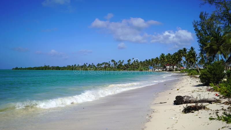 Pongwe海滩,桑给巴尔 库存图片