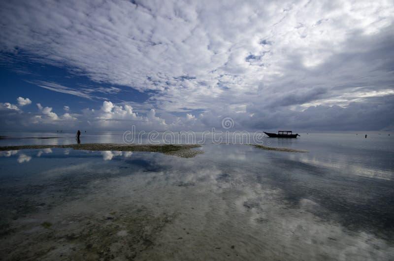 Pongwe, Zanzibar fotos de archivo libres de regalías