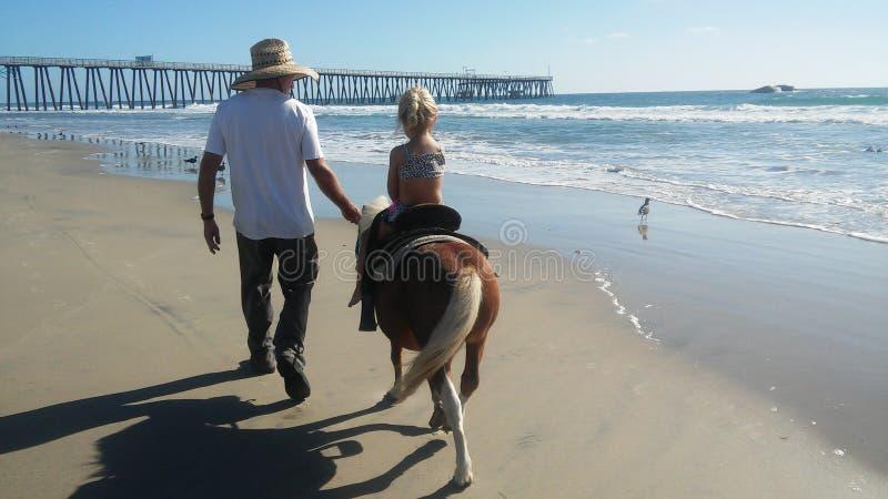 Ponnyritt på stranden royaltyfria foton