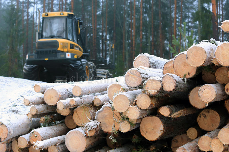 PONSSE Elk Forest Forwarder and Stack of Logs royalty free stock images