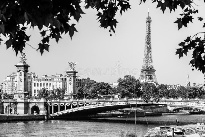 Pont亚历山大III桥梁的全景在河塞纳河和艾菲尔铁塔的夏天早晨 桥梁装饰与 库存图片