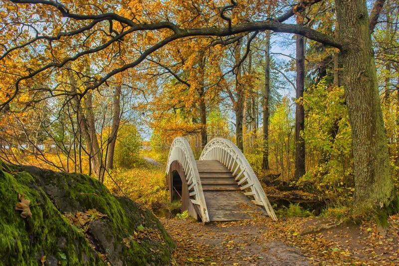 Pont à travers le canal en parc d'automne photographie stock