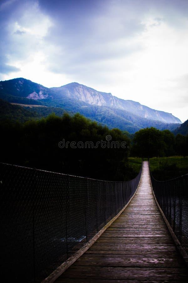 Pont accrochant au-dessus de rivière en montagnes roumaines images libres de droits