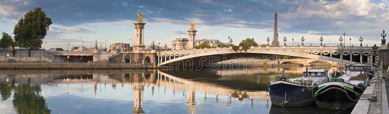 Pont Alexandre III und Eiffelturm, Paris stockfoto