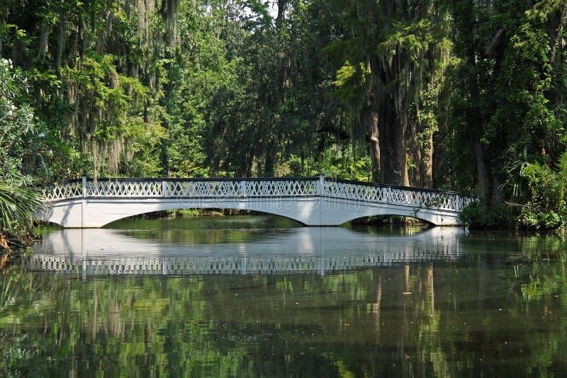 Pont au-dessus d'étang photographie stock