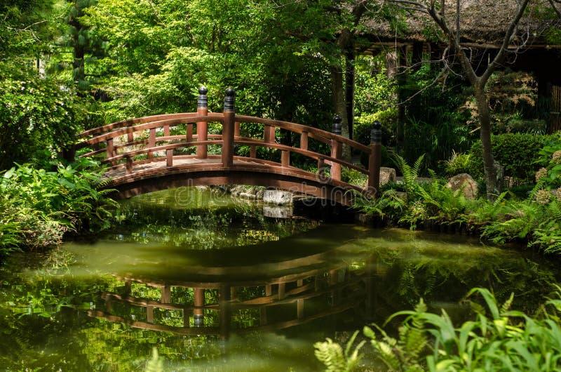 Pont au-dessus d'un étang image libre de droits