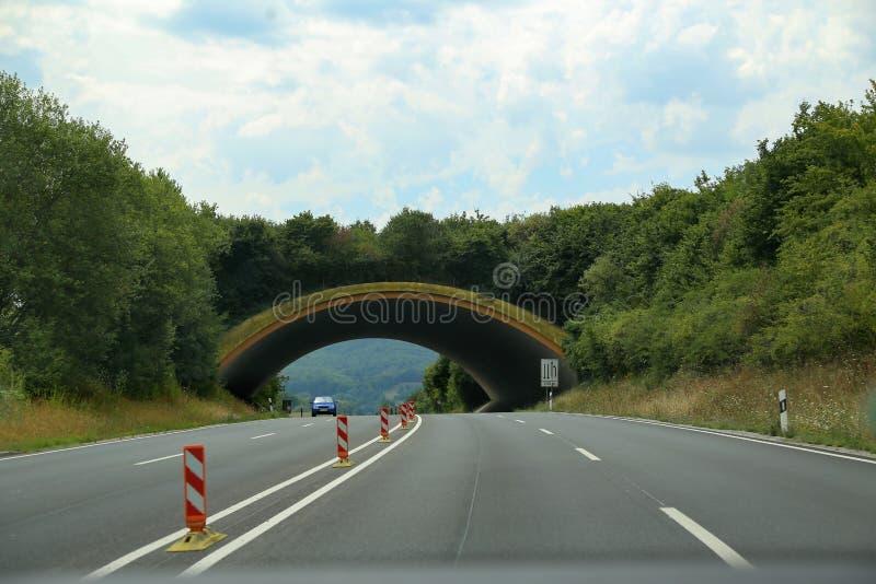 Pont au-dessus de la route pour des animaux image stock
