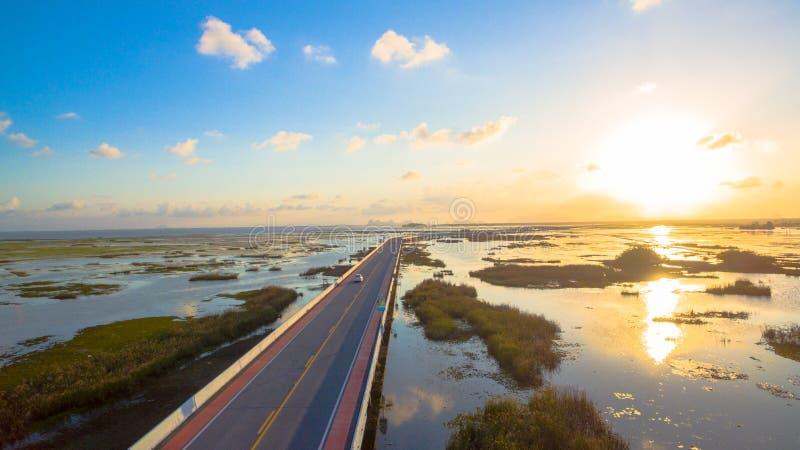 Pont au-dessus du marais photographie stock