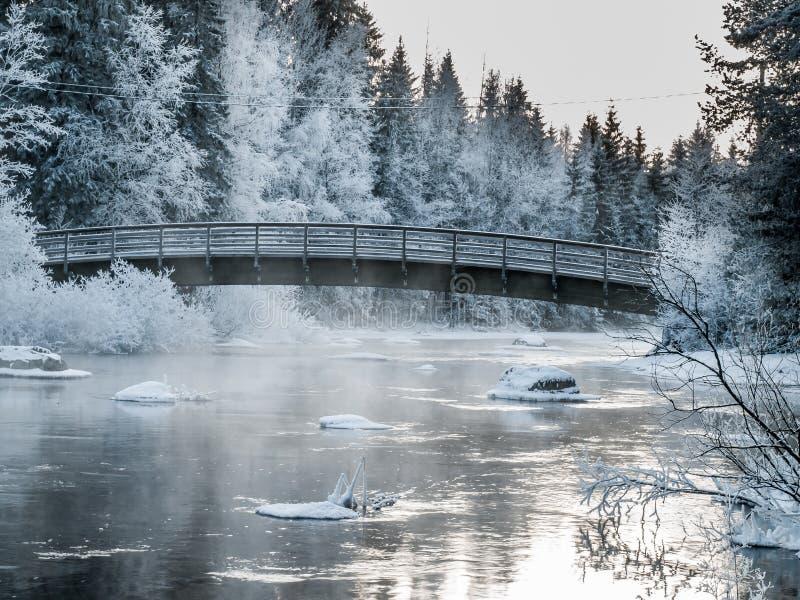 Pont au jour d'hiver froid image stock