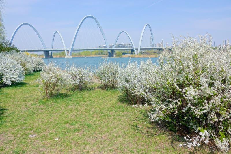 Pont au printemps photos libres de droits