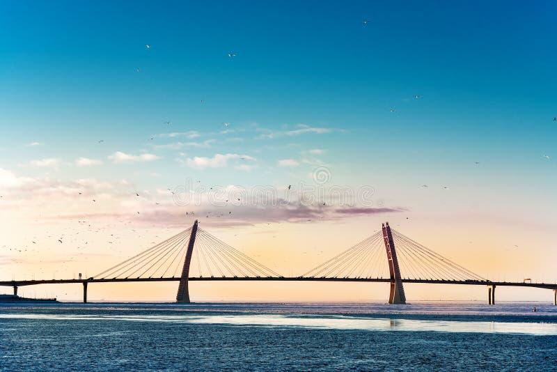 pont Câble-resté au-dessus de la baie de mer image libre de droits