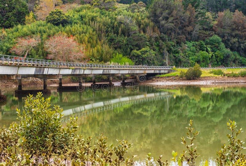 Pont concret parmi le feuillage de convoitise enjambant une rivière calme photos stock