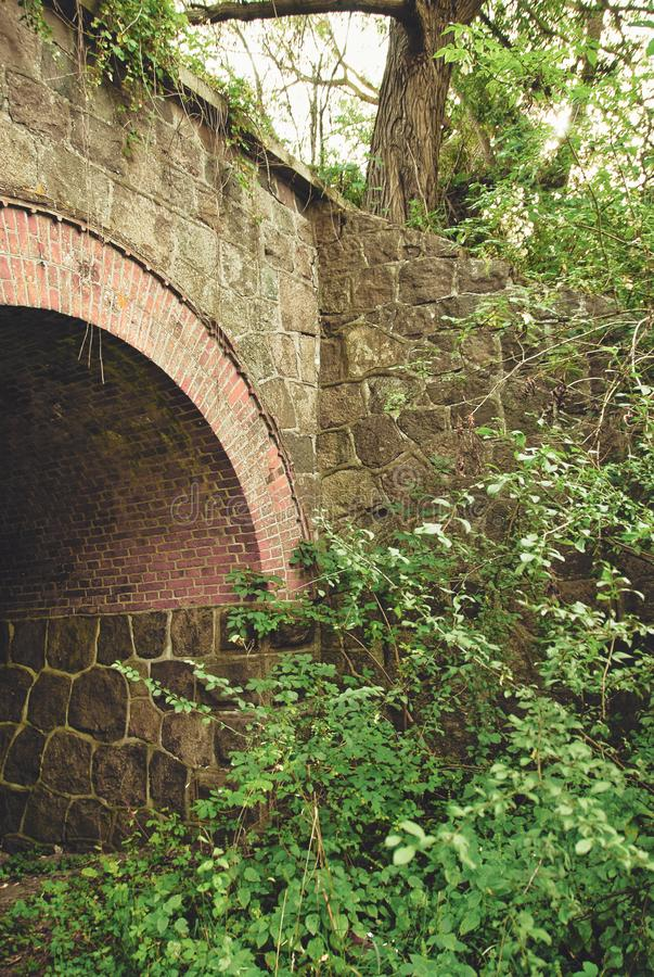 Pont délabré dans la région sauvage verte images libres de droits