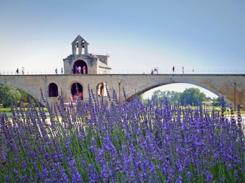 Pont d'Avignon arkivbild
