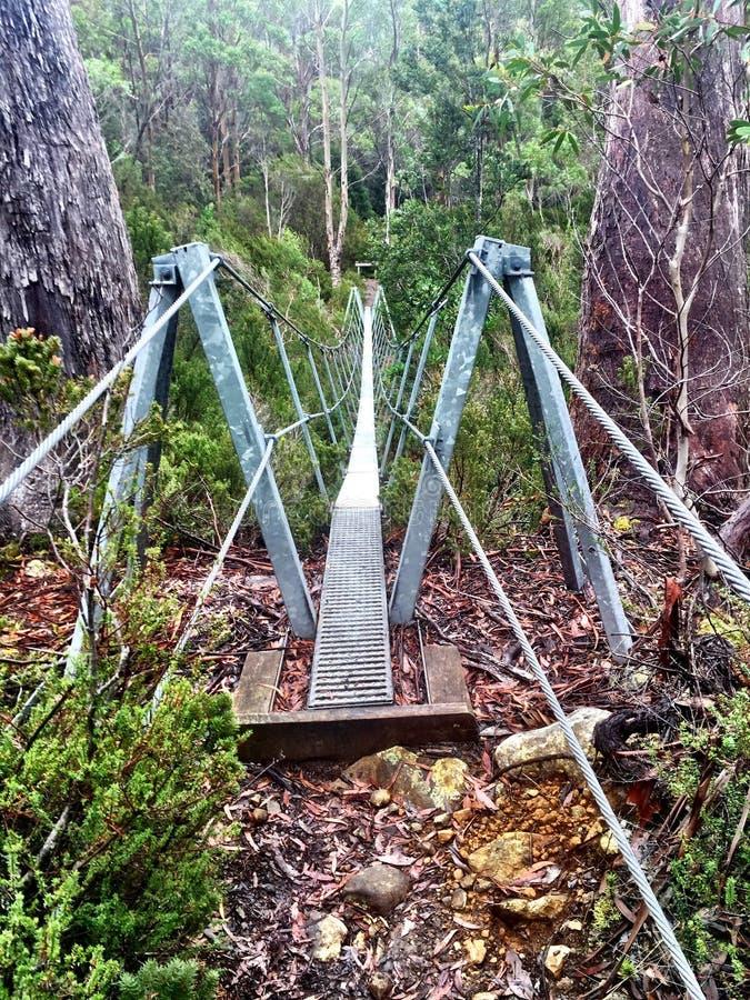 Pont d'oscillation photographie stock