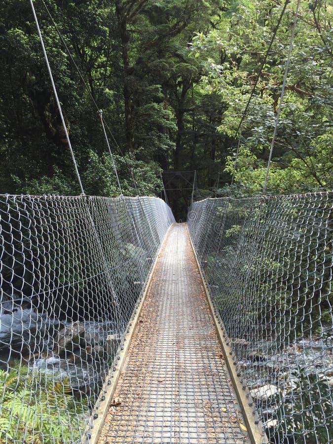 Pont d'oscillation de voie de Milford image stock