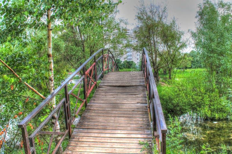 Pont dans la forêt images stock