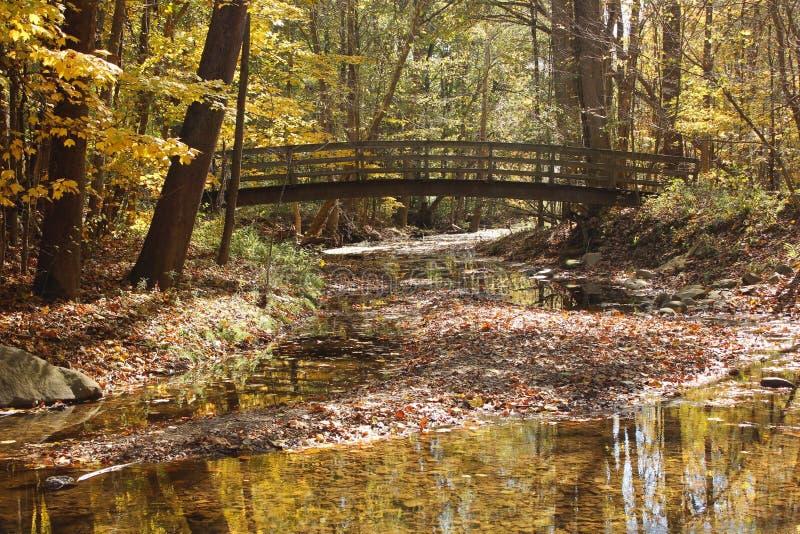 Pont dans les bois photos stock