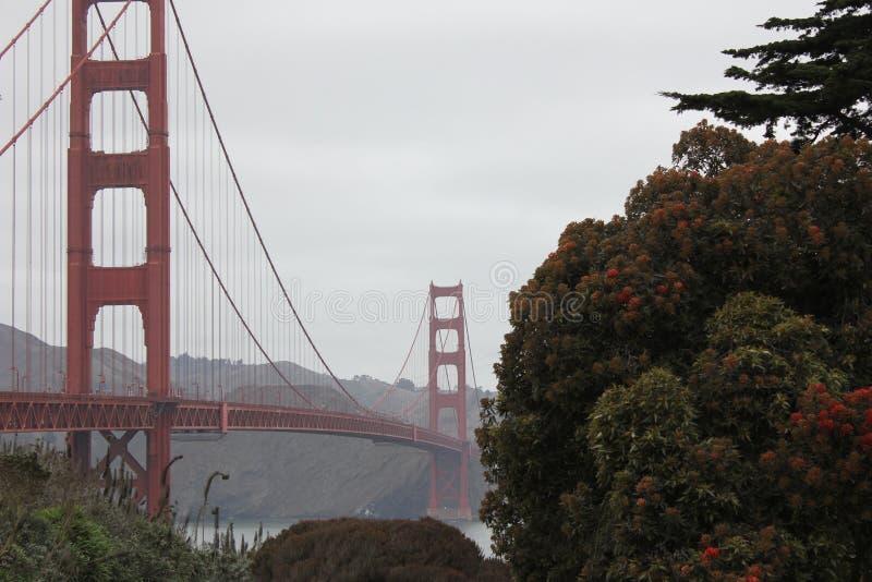 Pont de baie de fancisco de San photos libres de droits